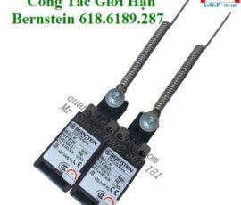 Công Tắc Bernstein 618.6189.287